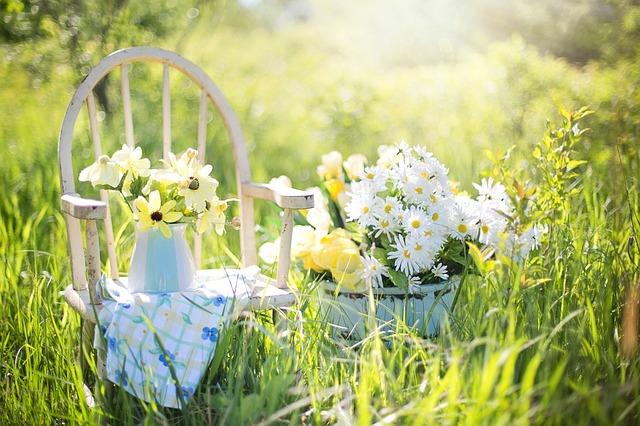 zahradní květiny